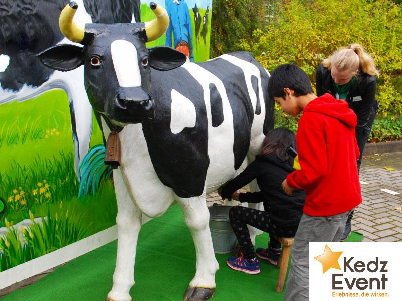 Die lebensgroße Kuh-Attrappe ist eine Riesengaudi für Kinder und Erwachsene. Wer die meiste Milch aus den Zitzen in der vorgegebene Zeit melkt, hat gewonnen.